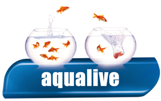 Aqualive - Products for Aquariums