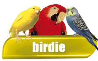 Birdie - Products for Birds