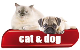 Cat & Dog - Products for Cat and Dog